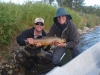 nice-fall-bow-river-brown-trout