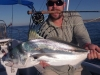 rooster-fish-on-fly
