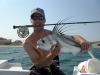 roosterfish-on-fly-2