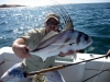 roosterfish-on-fly-4