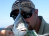 roosterfish-on-fly-6